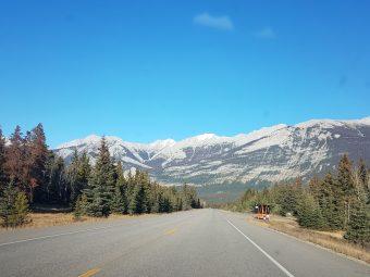 Cananda, Biofuels & Bioenergy Conference experiența canadiana